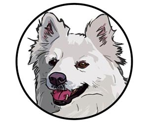 dog names for male american eskimo dog